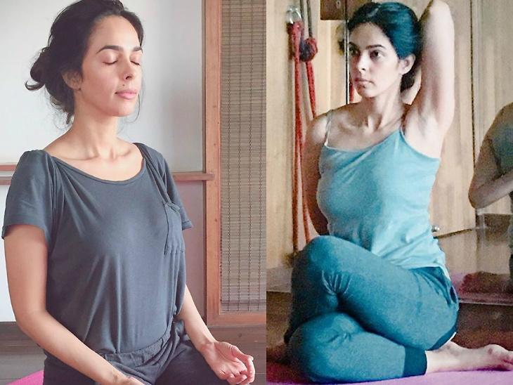 चित्रपटांपासून दूर अध्यात्म आणि सुदृढ आरोग्याच्या दिशेने मल्लिका शेरावत, हलासन आहे तिचे आवडते योगासन  - Divya Marathi