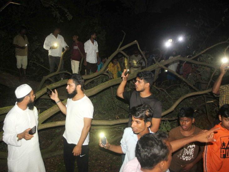 आरे कॉलनीत वृक्षांची कत्तल: ज्या तत्परतेने अधिकारी काम करत आहेत त्यांना पीओकेवर पाठवायला हवे -आदित्य ठाकरे|मुंबई,Mumbai - Divya Marathi