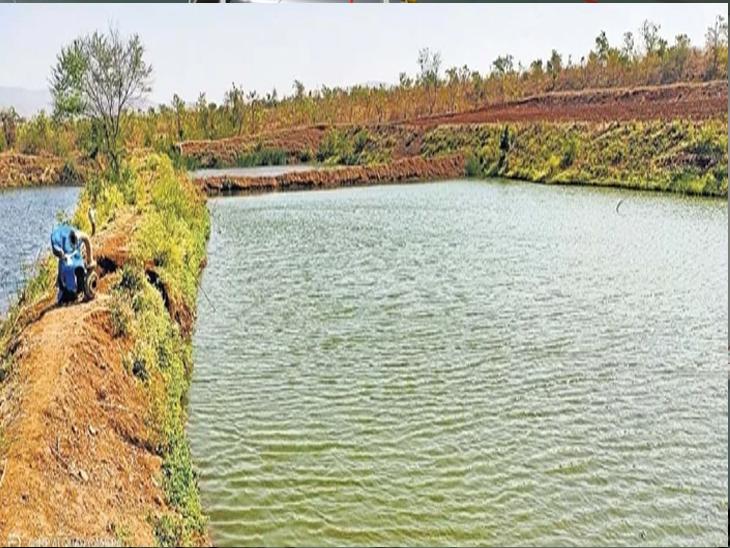 धरणाचे पाणी शेतात पाझरल्याने शेतकऱ्याने शेतातच तयार केलेले तलाव. - Divya Marathi