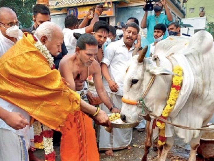 चेन्नईच्या श्री कादुंबडी चिन्नामन मंदिरात भागवत यांनी गोपूजन केले. - Divya Marathi