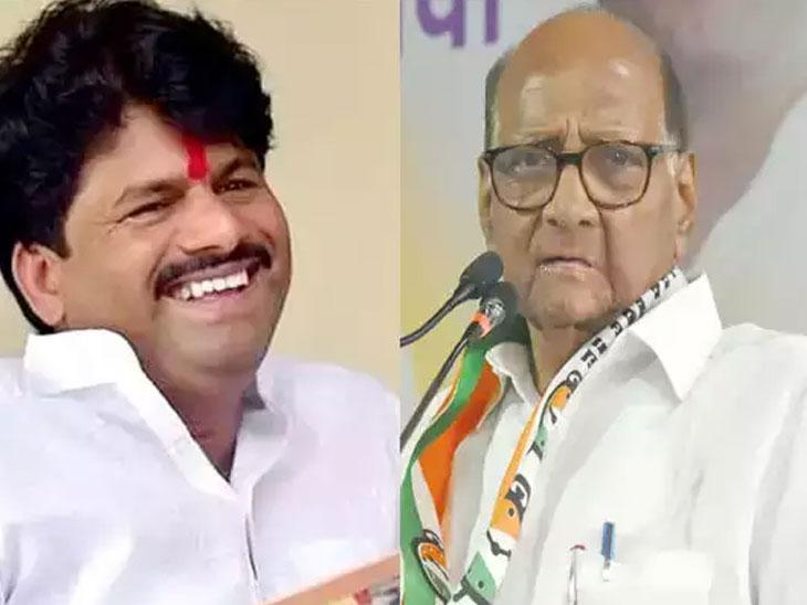 पवार हे साडेतीन जिल्ह्यांचे नेते, मी त्यांना मोठा नेता मानत नाही; भाजपचे आमदार गोपीचंद पडळकर यांचे टीकास्त्र सोलापूर,Solapur - Divya Marathi