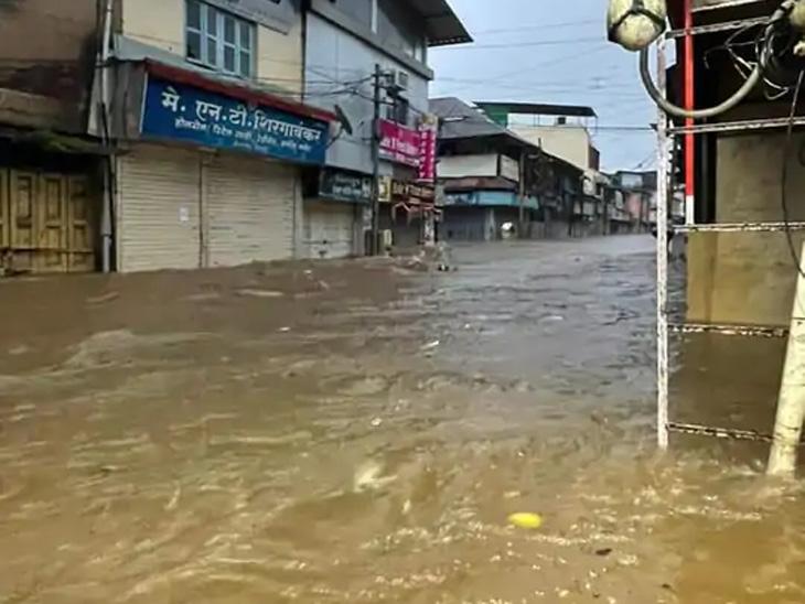 कोकणात घरात पाण्यासोबत शिरले साप, मगरी; चिपळूणमध्ये 2005 पेक्षा भयानक स्थिती|कोल्हापूर,Kolhapur - Divya Marathi