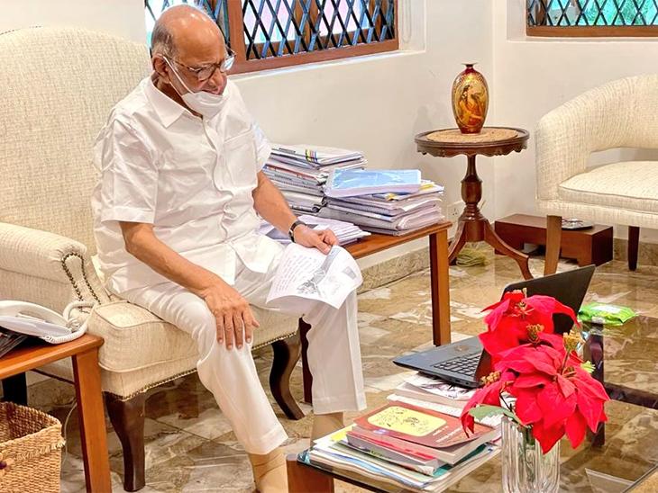 राष्ट्रवादी काँग्रेस अध्यक्ष शरद पवार 25 जुलै रोजी एका कार्यक्रमात ऑनलाइन सहभागी झाले त्यावेळी टिपलेला फोटो. (ट्विटर) - Divya Marathi