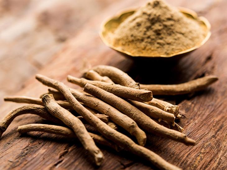 अश्वगंधा औषधावर ब्रिटनमध्ये संशोधन; कोविडपश्चातच्या औषधांबाबत करार देश,National - Divya Marathi