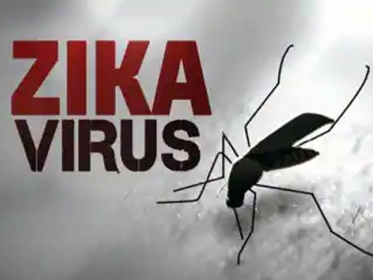 राज्यात झिका व्हायरसचे पहिले प्रकरण पुण्यात आढळले; 50 वर्षीय महिला संक्रमित, केरळमध्ये 63 रुग्ण|पुणे,Pune - Divya Marathi
