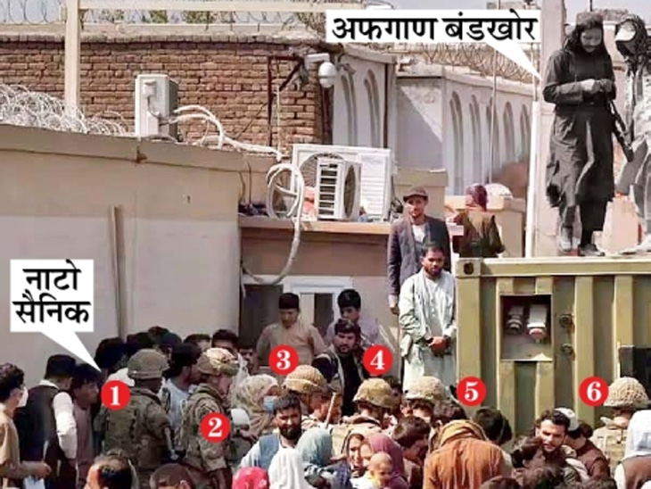 छायाचित्र काबूल विमानतळाबाहेरचे आहे. येथे गर्दी नियंत्रित करून लोकांना विमानतळात जाऊ देणाऱ्या नाटो सैन्याच्या कंटेनरवर तालिबान उभे राहिले. मात्र, दोन्हीकडून सामंजस्य दिसून आले. - Divya Marathi