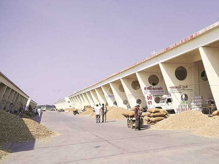 રાજકોટ માર્કેટ યાર્ડમાં ગુજકોટની ઓફીસ કરાઈ સીલ , 5 મહિનાથી ચડતું હતું ભાડુ|ઈન્ડિયા,National - Divya Bhaskar