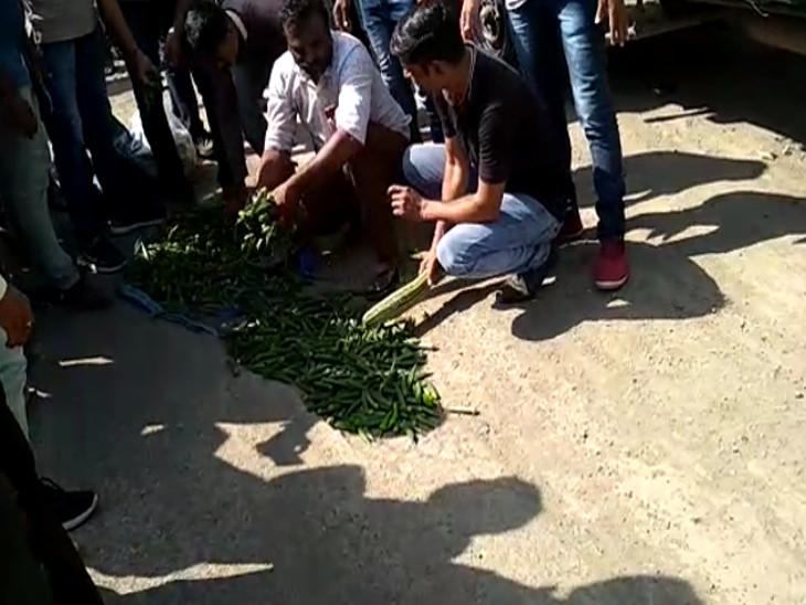 પૂરતા ભાવ ન મળતા રાજકોટમાં ખેડૂતો અને SPGએ શાકભાજીથી રસ્તાના ખાડા પૂર્યા, ચક્કાજામ|ઈન્ડિયા,National - Divya Bhaskar