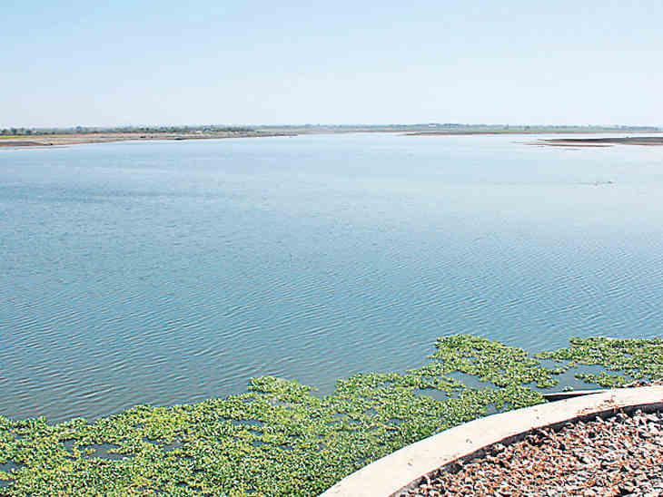 આજી ડેમમાં અત્યાર સુધીમાં 1529 કરોડ લિટર પાણી ઠલવાયું - Divya Bhaskar