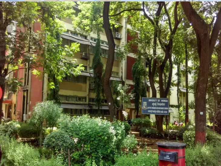 મુંબઈ યુનિવર્સિટીમાં ગુજરાતી વિભાગ ધરાવતાં રાનડે ભવનનો સ્લેબ તૂટ્યો મુંબઇ,Mumbai - Divya Bhaskar