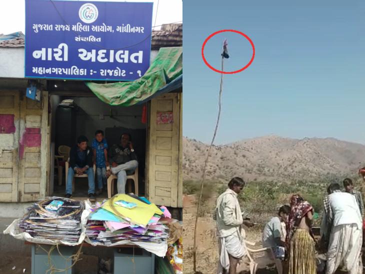 રાજકોટમાં નારી અદાલતમાં પતંગ વેચાઈ રહી છે અને પોશીનામાં ડુંગર પર રાઉટર રાખી નોંધણી થઈ રહી છે - Divya Bhaskar