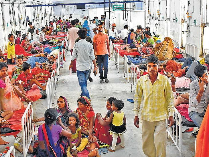 મગજના તાવથી  વધુ 28 બાળકોના મોત, મૃત્યુઆંક 122એ પહોંચ્યો;10 વર્ષમાં 471ના મોત ઈન્ડિયા,National - Divya Bhaskar