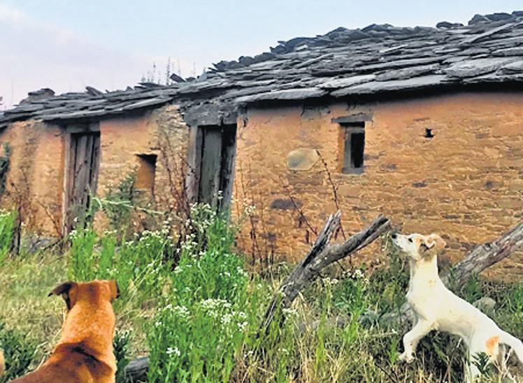 ઉત્તરાખંડમાં 1700 ગામ વેરાન, ઘરો હોમ સ્ટેમાં બદલાઈ રહ્યાં છે|ઈન્ડિયા,National - Divya Bhaskar