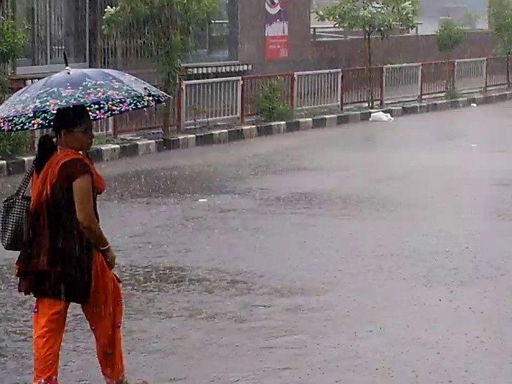 દક્ષિણ ગુજરાતમાં ઉમરપાડામાં ત્રણ ઈંચ વરસાદ, નદીઓ બે કાંઠે વહેતી થઈ સુરત,Surat - Divya Bhaskar