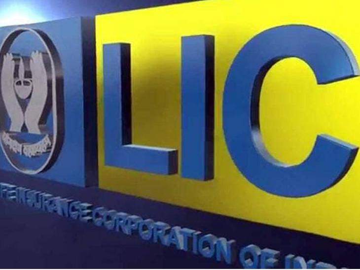 LICમાં આસિસ્ટન્ટની 8.500 પોસ્ટ્સ પર ભરતી થશે, 1 ઓક્ટોબર સુધી ઓનલાઇન અપ્લાય કરી શકાશે ઈન્ડિયા,National - Divya Bhaskar