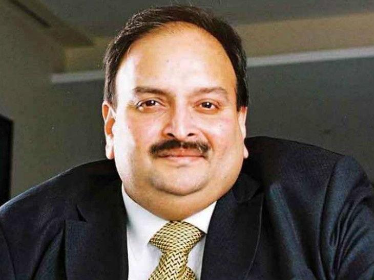 મેહુલ ચોકસીના વકીલે કહ્યું- કોર્ટના ચૂકાદા પહેલા કોઈ દોષી હોતું નથી ઈન્ડિયા,National - Divya Bhaskar