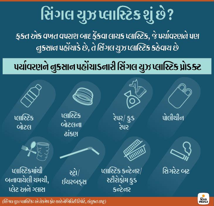 હાલ 5% પ્લાસ્ટિક સિંગલ યુઝ; કોટન બેગથી પોલીથીન 20 ગણી સસ્તી, એટલે તેનો વપરાશ વધારે|ઈન્ડિયા,National - Divya Bhaskar