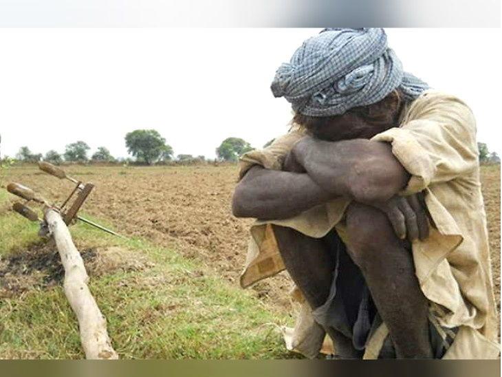 મરાઠાવાડામાં દુષ્કાળ, ઓછી આવક અને દેવાના કારણે આ વર્ષે 715 ખેડૂતોએ આત્મહત્યા કરી|ઈન્ડિયા,National - Divya Bhaskar