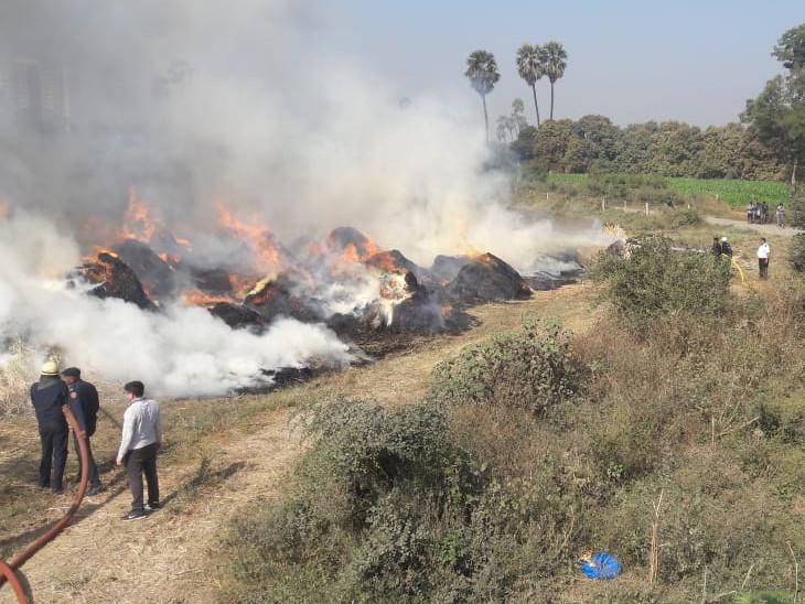 પાલમાં ગૌરવ પથ રોડ પર તબેલાના ઘાંસના જથ્થામાં લાગેલી આગ પર કાબૂ મેળવાયો સુરત,Surat - Divya Bhaskar