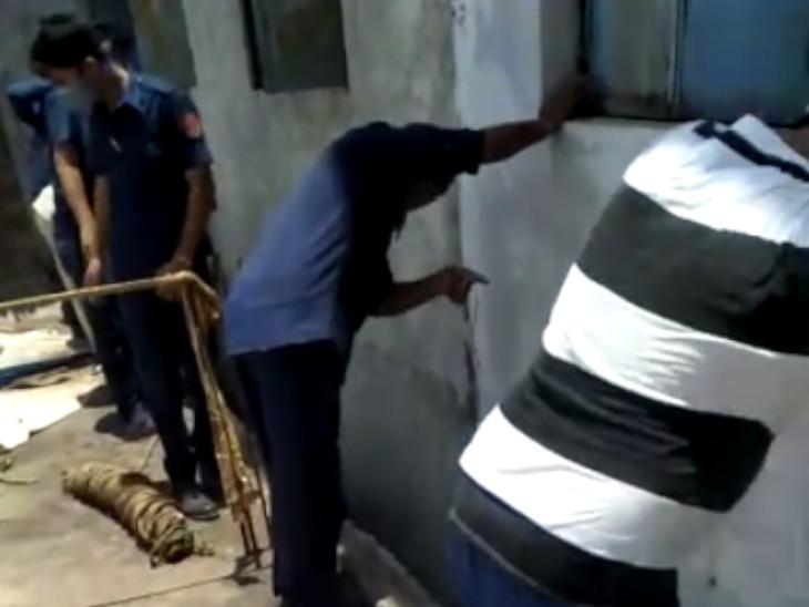 વેડ રોડ પંડોળની સહયોગ ઈન્ડ્સ્ટ્રીઝમાં ખાડામાં ખાબકેલી ગાયનું રેસ્ક્યું કરાયું|સુરત,Surat - Divya Bhaskar