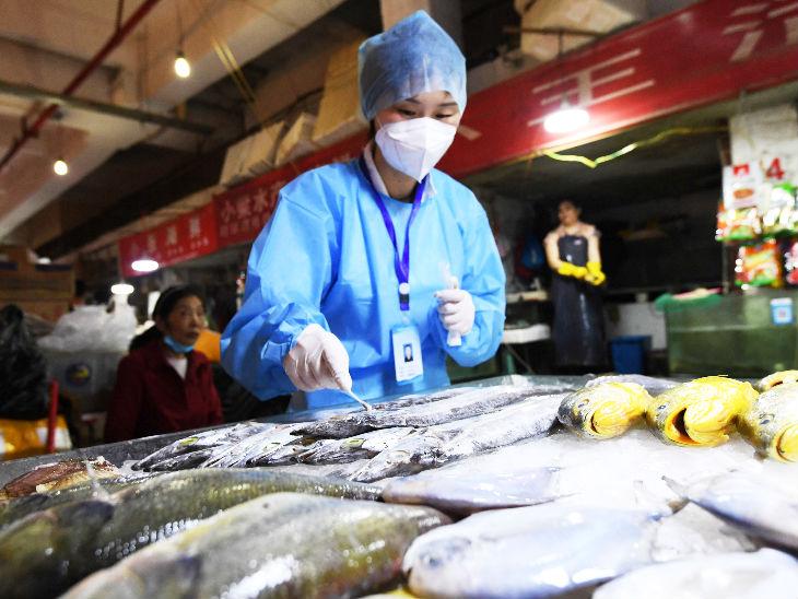 આ તસવીર ચીનના નાનજિંગ જિલ્લાની છે. અહીં એક માર્કેટમાં સેન્ટર ફોર ડિસીઝ કન્ટ્રોલ એન્ડ પ્રિવેન્શનની એક કર્મચારી કોરોના ટેસ્ટ માટે માછલીના સ્વાબનો સેમ્પલ લઇ રહી છે.