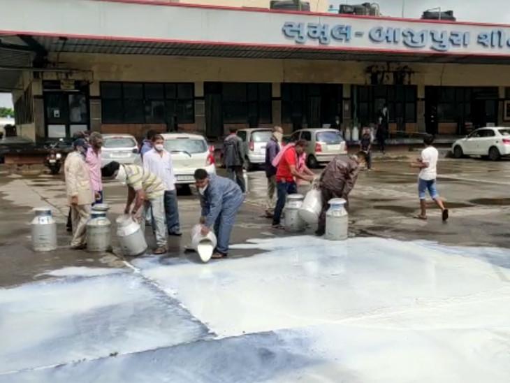 સુમુલ ડેરીએ દૂધ ખરીદવાનું બંધ કરતાં બેડકુવા ગામના પશુપાલકોએ બાજીપુરામાં દૂધ ઢોળી વિરોધ કર્યો વ્યારા,Vyara - Divya Bhaskar