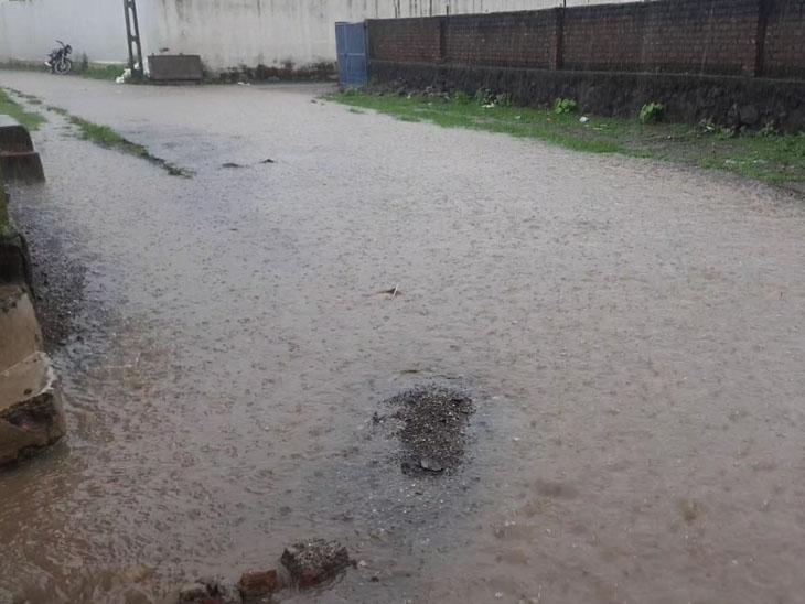 વડિયામાં પોણા 3, બગસરામાં દોઢ ઇંચ વરસાદ નોંધાયો અમરેલી,Amreli - Divya Bhaskar