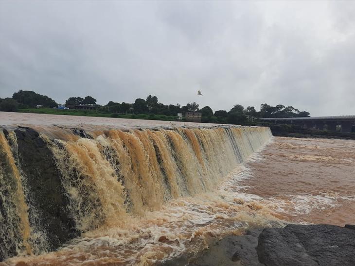ઉમરપાડામાં 9, નવસારીમાં સવા પાંચ ઈંચ વરસાદ, ઉત્તર ગુજરાતમાં ઝાપટાં પડ્યાં સુરત,Surat - Divya Bhaskar