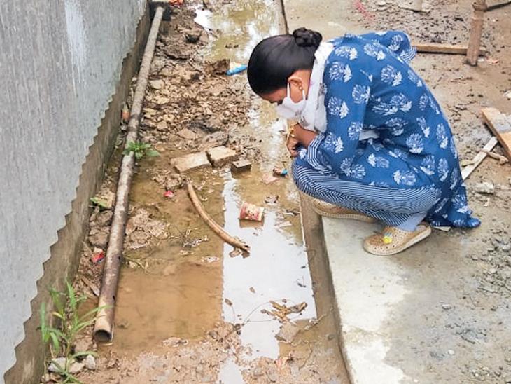 વિશ્વ મચ્છર દિને 366 એકમમાં તપાસસ મચ્છરોના બ્રીડિંગ મળતાં 193ને નોટિસ, 4 લાખ દંડ અમદાવાદ,Ahmedabad - Divya Bhaskar