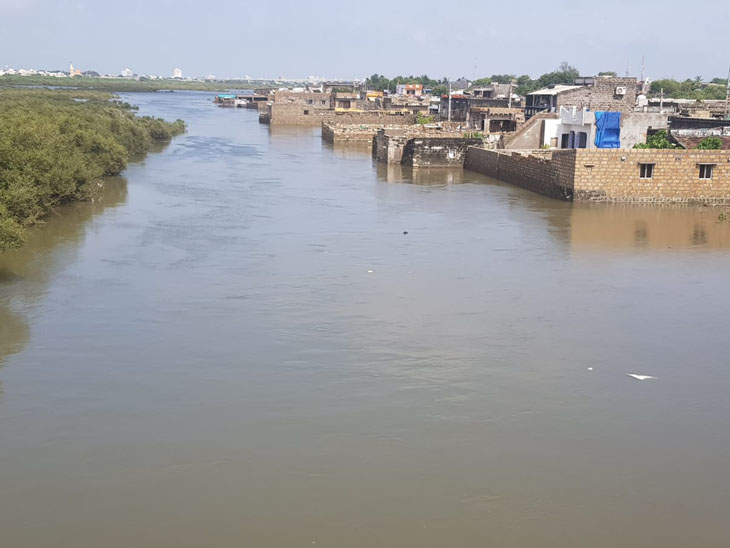 ભાદર નદી ભર થતા અને ડેમોમાંથી છોડવામાં આવતા પાણીને લીધે પોરબંદરની ખાડીના પાણીનું સ્તર પણ ઉંચુ આવી રહ્યુ છે - Divya Bhaskar