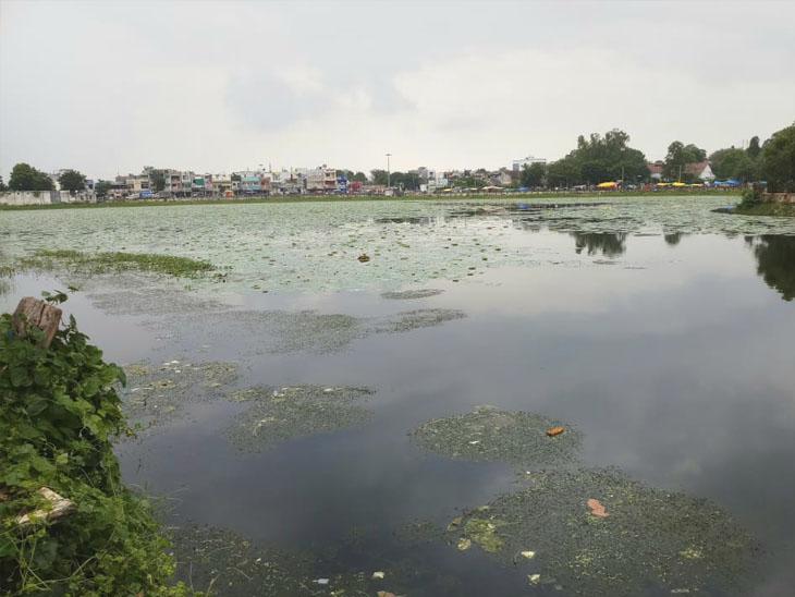 છોટાઉદેપુરનું કુસુમસાગર તળાવ હજુ ભરાયું નથી. - Divya Bhaskar