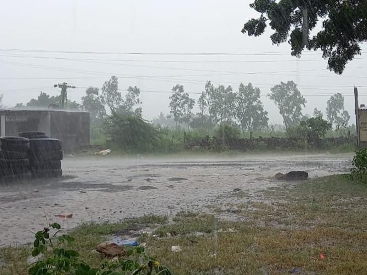 ગડુ અને ગીર પંથકમાં વીજળીના કડકા ભડાકા સાથે વરસાદ, ખેડૂતોને પાક નિષ્ફળ જવાની ચિંતા વેરાવળ,Veraval - Divya Bhaskar
