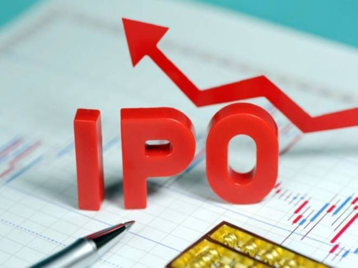 માર્ચ 2019માં IPOએ લગભગ 5,000 કરોડ રૂપિયા એકત્રિત કર્યા હતા. - Divya Bhaskar
