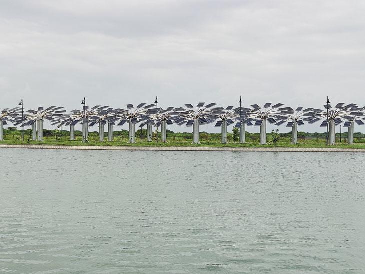 મેમોરિયલમાં 41 સોલર ટ્રી લગાવાયાં છે. - Divya Bhaskar