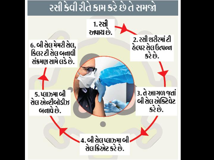 આશા છે કે આ વર્ષે ઇમરજન્સી ઉપયોગ માટે રસીને મંજૂરી મળી જશે. - Divya Bhaskar