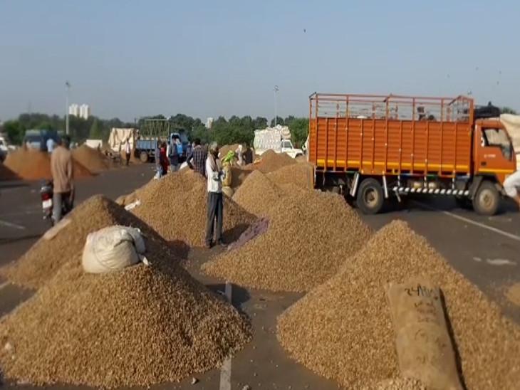 ખેડૂતો મગફળી લઈને બેડી યાર્ડ પહોંચી ગયા - Divya Bhaskar