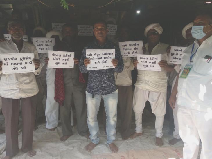 ડેરીમાં ભ્રષ્ટાચાર, ભરતીમાં સગાવાદ અને પશુપાલકોને ભાવફેર આપવામાં આવતો હોવાનો કિસાનસંઘનો આક્ષેપ, ડેરીની ચૂંટણી 12 ઓક્ટોબરે યોજાશે|રાજકોટ,Rajkot - Divya Bhaskar