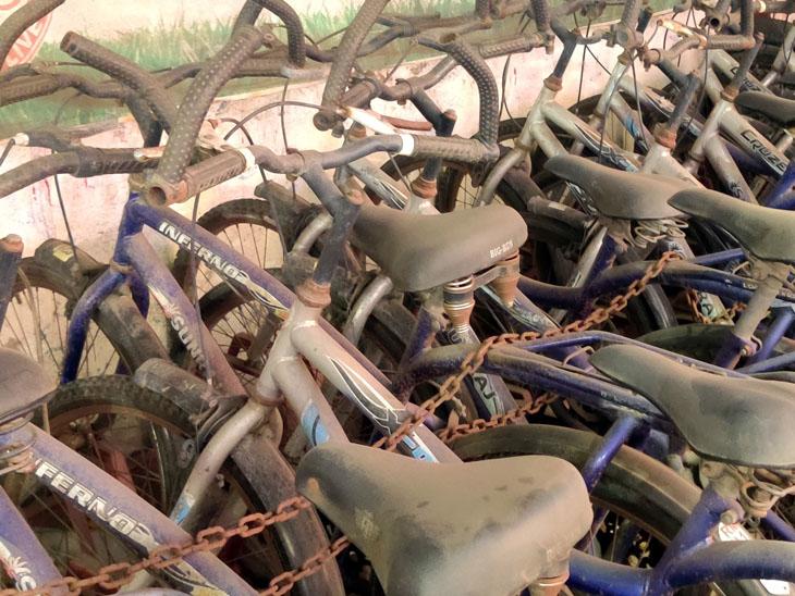 સ્માર્ટ સિટી હેઠળ સાઇકલને પ્રોત્સાહનની વાતો વચ્ચે સાઇકલ શેરિંગ પ્રોજેક્ટમાં સાઇકલ ધૂળ ખાય છે|રાજકોટ,Rajkot - Divya Bhaskar
