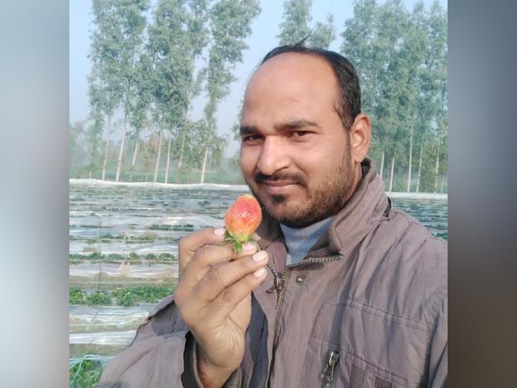 બારાબંકીના સરકારી ટીચરે રજા લઈને ખેતી શરૂ કરી, ફળ-શાકભાજી ઉગાડ્યાં; આજે વર્ષે એક કરોડની કમાણી કરી રહ્યા છે|ઓરિજિનલ,DvB Original - Divya Bhaskar