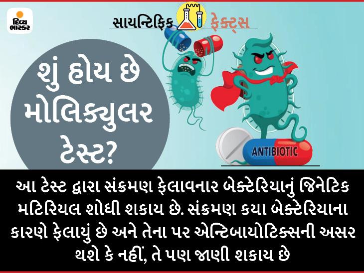 મોલિક્યુલર ટેસ્ટ જણાવશે કે બેક્ટેરિયાથી થતી બીમારીઓમાં એન્ટિબાયોટિક્સ દવાઓ અસર કરશે કે નહીં હેલ્થ,Health - Divya Bhaskar