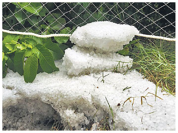 ભીલવાડામાં ઘણી જગ્યાએ બરફ સાથે વરસાદ પડ્યો. અહીં લીંબુના આકાર જેવા બરફના ટુકડા પડ્યા અને ફ્રીઝ થઈ ગયા. - Divya Bhaskar