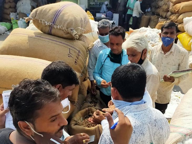 મગફળીના વેચાણ બદલ માર્કેટયાર્ડના 110 જેટલા વેપારીઓએ ખેડુતોને અંદાજે કુલ રૂપિયા 3.65 કરોડની ચુકવણી કરી છે. - Divya Bhaskar