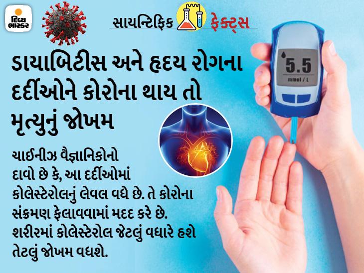 હૃદય અને ડાયાબિટિસના દર્દીઓમાં કોરોના થવા પર હાઈ કોલેસ્ટેરોલ મૃત્યુનું જોખમ વધારે છે, આ રીતે તેને કન્ટ્રોલ કરો હેલ્થ,Health - Divya Bhaskar