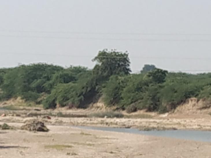 રૂપેણ નદીમાં નર્મદાના પાણી છોડવા કાંઠાના ખેડુતોની માંગ ઉઠી છે. - Divya Bhaskar