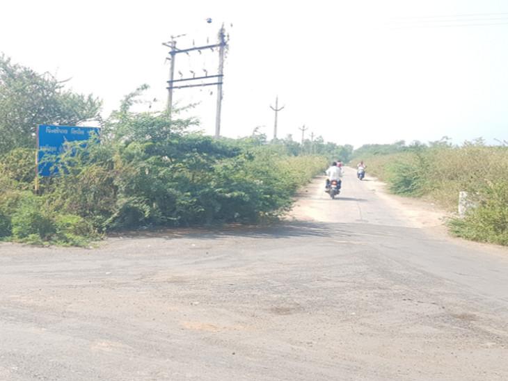 નસવાડી તાલુકા સેવાસદન કચેરી અને સિવિલ કોર્ટનું બોર્ડ જંગલ ઝાડીથી ઢંકાયેલું તસવીરમાં નજરે પડે છે. - Divya Bhaskar