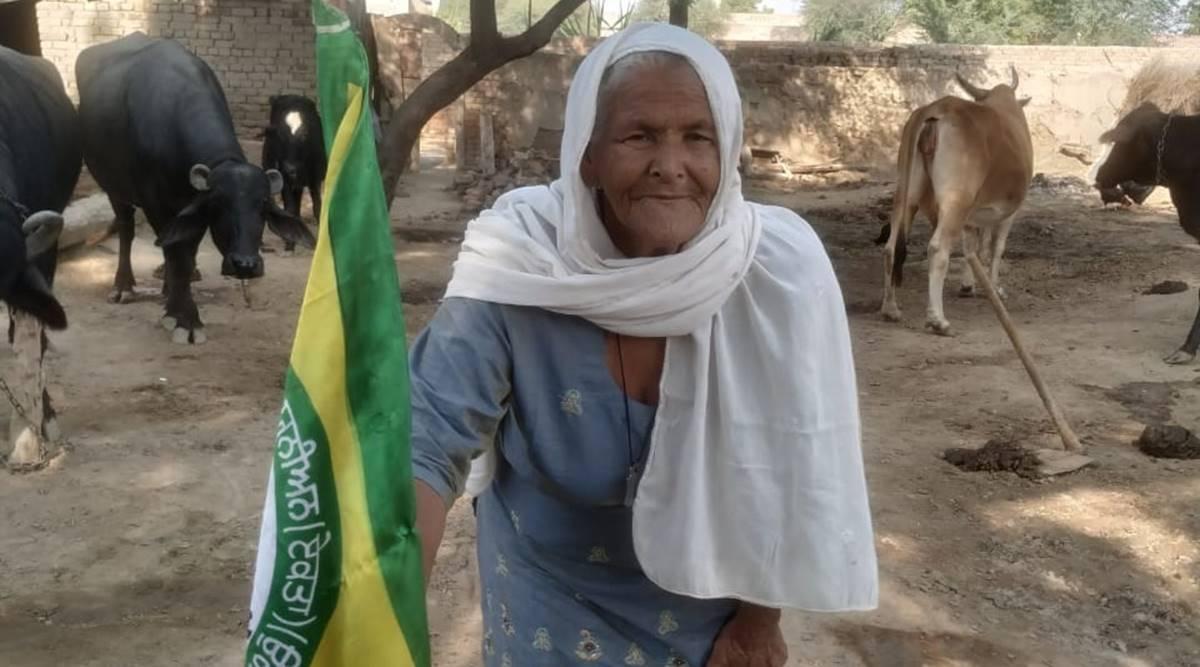 મહિન્દર કૌર ખેડૂત આંદોલનને આર્થિક મદદ પણ કરી રહ્યા છે.