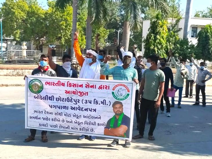 ભારતીય કિસાન સેના દ્વારા છોટાઉદેપુર કલેક્ટરને આવેદન, દિલ્હીના ખેડૂત આંદોલન મુદ્દે ખેડૂતોનો વિરોધ છોટા ઉદેપુર,Chhota Udaipur - Divya Bhaskar