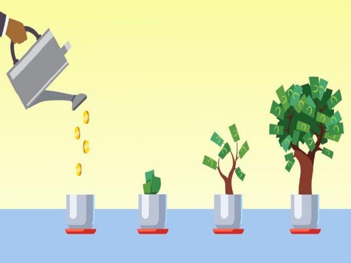 સારા રિટર્ન માટે વોલેન્ટરી પ્રોવિડન્ટ ફંડ અથવા ELSSમાં રોકાણ કરો, તેમાં ટેક્સ છૂટનો પણ લાભ મળશે|યુટિલિટી,Utility - Divya Bhaskar