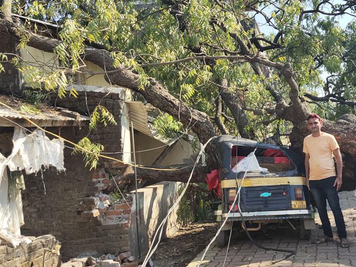 વાંકાનેરમાં તોતિંગ વૃક્ષ પડતાં મકાન અને રિક્ષાનો ખુરદો, વીજપોલ પણ ધરાશયી|વાંકલ,Vankal - Divya Bhaskar