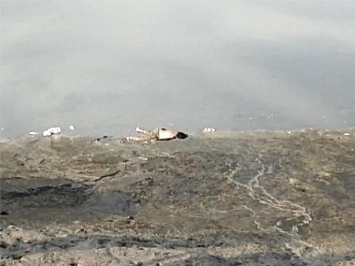 સુરતમાં તાપી નદીમાં 4 બાળકો ડૂબ્યા હતા, લાપતા બાળકીનો મૃતદેહ 40 કલાક બાદ મળ્યો સુરત,Surat - Divya Bhaskar